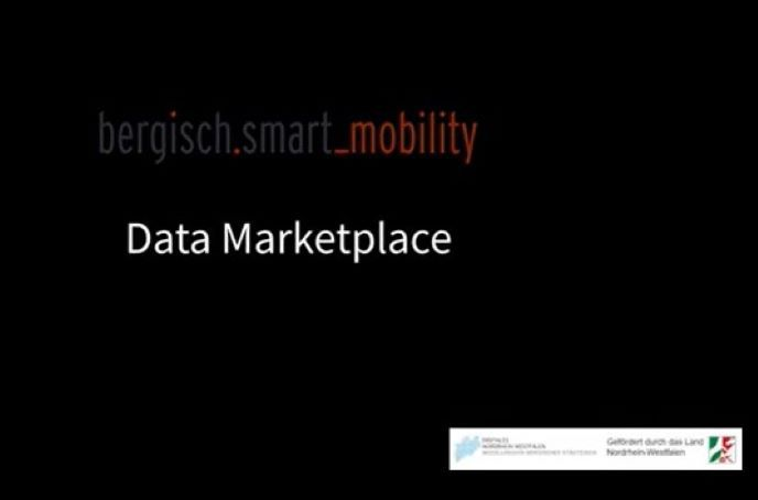 The Data Market Place